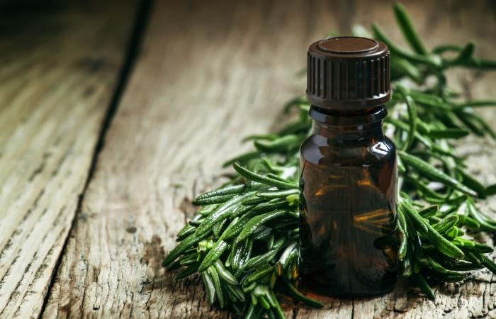 Эфирные масла антибиотики - список