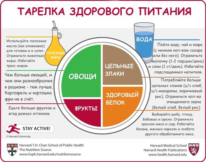 Основные правила здорового питания - схема ПП тарелки
