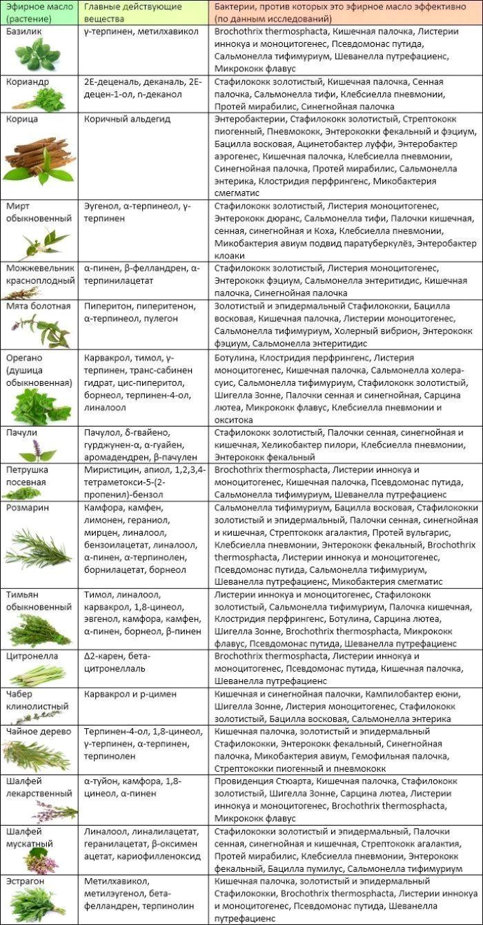 17 антибактериальных эфирных масел широкого спектра действия (таблица))